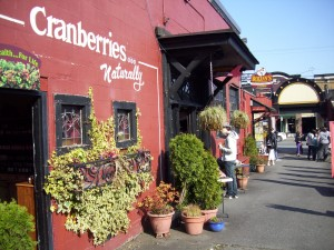 Cranberry-Laden in Fort Langley